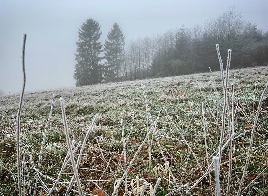 Bildergalerie Guckheimer Wintermärchen